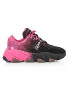 Ash Sneakers Bicolour Black And Degrade Fuxia