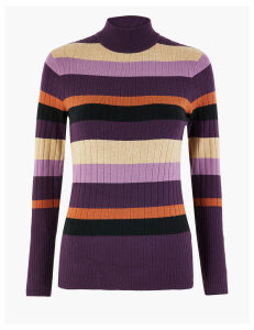 M&S Collection Striped Funnel Neck Slim Fit Jumper