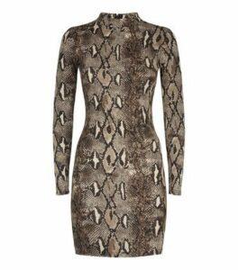AX Paris Light Grey Snake Print Bodycon Dress New Look