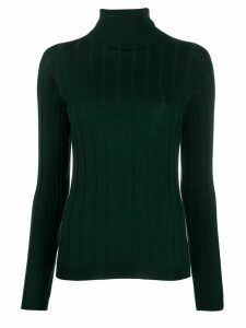 Sofie D'hoore turtle-neck fitted sweater - Green