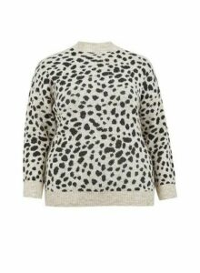 Womens Dp Curve Grey Leopard Print Spandex Jumper - Cream, Cream