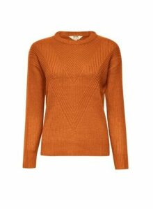 Womens Petite Ginger Ribbed Stitch Jumper, Ginger