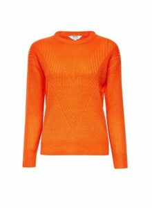 Womens Petite Orange Ribbed Stitch Jumper- Orange, Orange