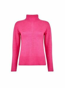 Womens Pink Spandex High Neck Jumper- Pink, Pink