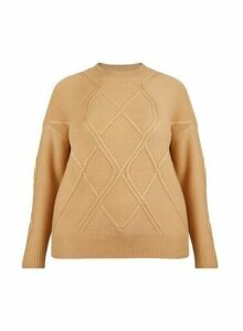 Womens **Dp Curve Camel Diagonal Jumper- Brown, Brown