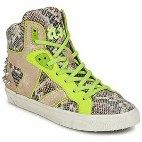 Ash  SONIC  women's Shoes (High-top Trainers) in Brown