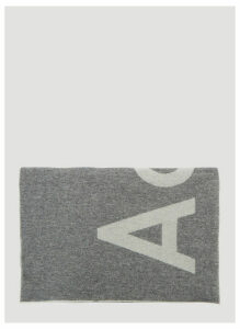 Acne Studios Toronty Logo Scarf in Grey. size One Size
