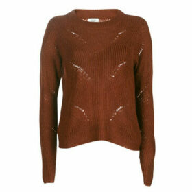 JDY  JDYDAISY  women's Sweater in Brown