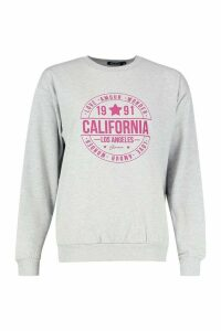 Womens Petite Logo Oversized Sweatshirt - grey - M, Grey