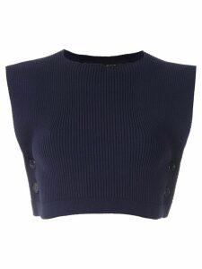 Gloria Coelho knit cropped top - Blue