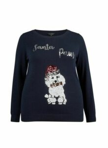 Womens Dp Curve Navy Santa Paws Christmas Jumper - Blue, Blue