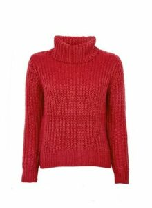 Womens Petite Cerise Chunk Roll Neck Jumper- Pink, Pink