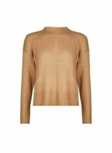 Womens Petite Camel Spandex Jumper- Brown, Brown