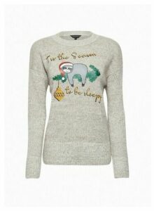 Womens Grey Christmas Sloth Jumper, Grey