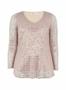 Blush Sparkle V-Neck Long Sleeve Top, Blush