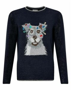 Monsoon Bertie Dog Jumper