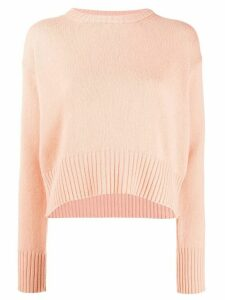 Forte Forte crew-neck sweater - PINK
