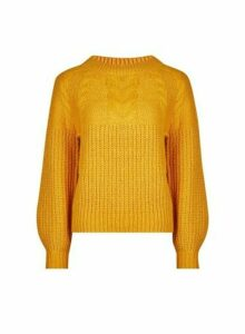 Womens Petite Yellow Cable Jumper- Orange, Orange