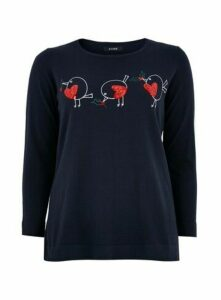 Navy Blue Robin Print Jumper, Navy