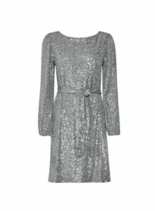 Womens Silver Sequin Belted Fit And Flare Dress, Silver