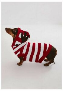 Red Stripe Christmas Antler Dog Hoodie, Red