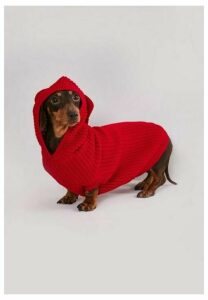 Red Rib Knitted Dog Hoodie, Red