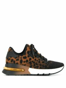 Ash Krush leopard sneakers - Black