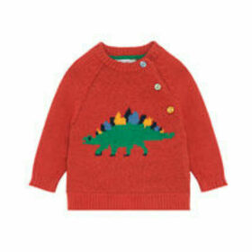 Dino Stamp Baby Knitwear