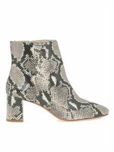 Sophia Webster Ankle Boot