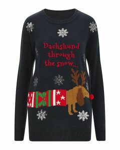 Christmas Dachshund Jumper