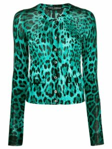 Dolce & Gabbana Pre-Owned 2000s leopard print cardigan - Green