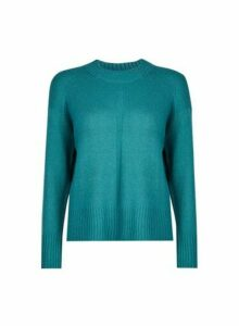 Womens Petite Green Spandex Jumper- Blue, Blue