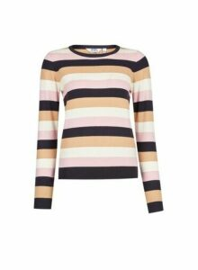 Womens Petite Multi Colour Stripe Print Jumper, Multi Colour