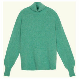 Frnch  Long-sleeved turtleneck sweater in knit NARY  women's Sweater in Green