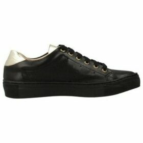 Antonio Miro  316401  women's Shoes (Trainers) in Black