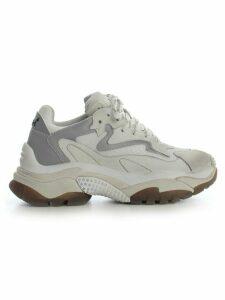 Ash Sneakers Nubuck