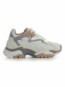Ash Classic Sneakers