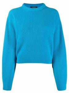 Canessa cashmere ribbed jumper - Blue