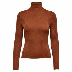 Only  15178443 FLORA  women's Sweater in Brown
