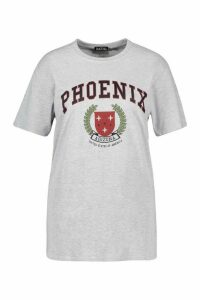 Womens Plus Phoenix Slogan T-Shirt - Grey - 20, Grey