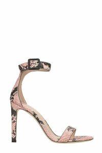 Giuseppe Zanotti Neyla Sandals In Rose-pink Leather