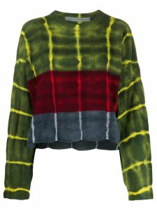 Raquel Allegra long sleeve stripe dye boxy sweater - Green