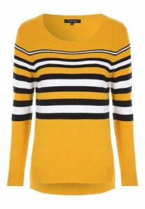Womens Mustard Stripe Jumper