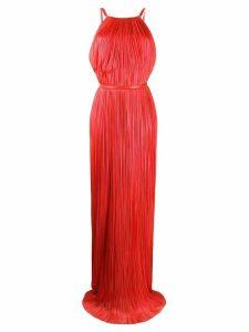 Maria Lucia Hohan flared evening dress