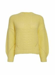 Womens Petite Yellow Pointelle Jumper, Yellow