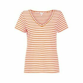 John Lewis & Partners Cotton Slub V-Neck Stripe T-Shirt