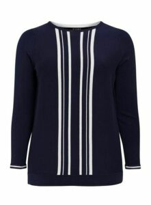 Navy Blue Striped Jumper, Others