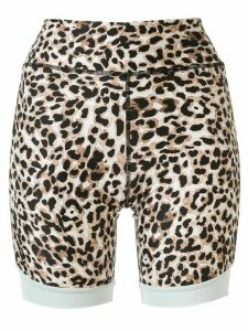 The Upside Water Leopard cycle shorts - Multicolour