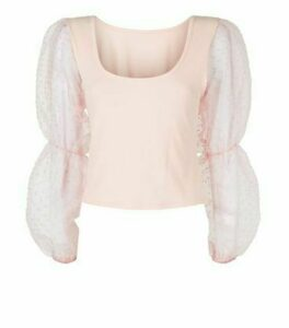 Cameo Rose Pale Pink Mesh Puff Sleeve Top New Look