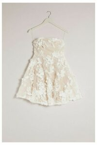 Womens Occasion 3D Floral Detail Bandeau Skater Dress - White - 8, White
